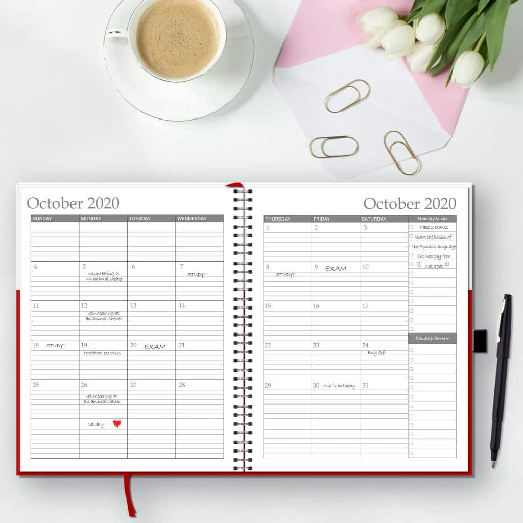 monthly page of the weekly and monthly planner open