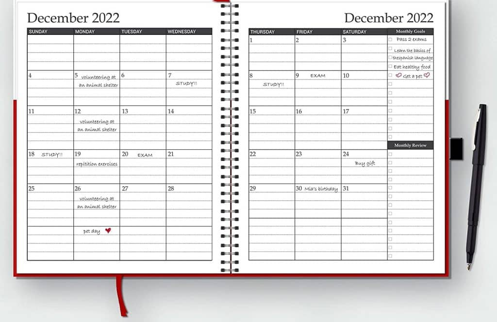 monthly spread of the weekly and monthly planner with 15-minute time block slots